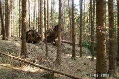 Polomy 2008